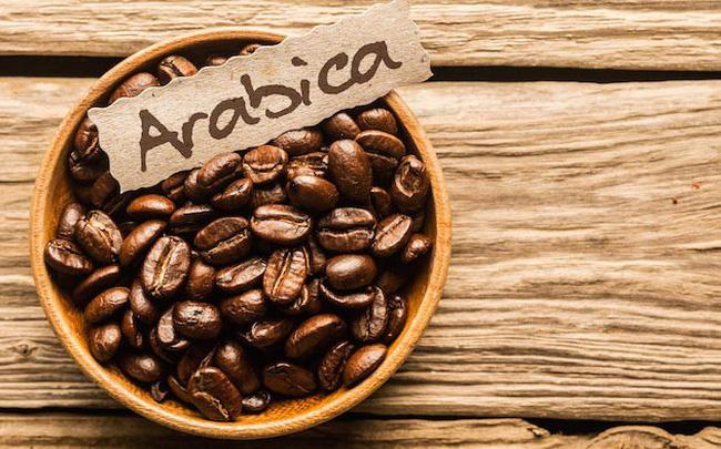 Arabica Cầu Đất - Cà Phê Được Nhiều Người Ưa Chuộng